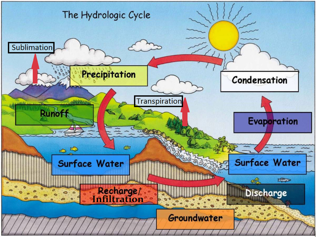 water cycle diagram for class 7 the image kid has it. Black Bedroom Furniture Sets. Home Design Ideas